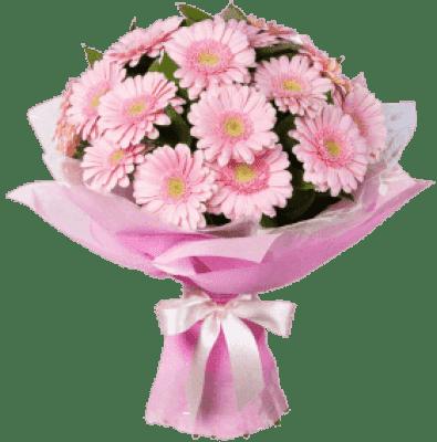 Букет из 21 розовой герберы