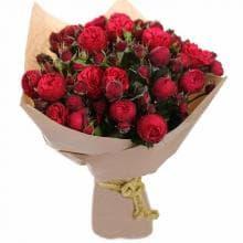 19 Кустовых роз РЕД ПИАНО