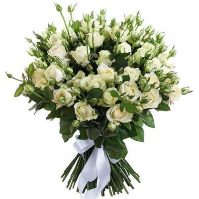 51 роза спрей