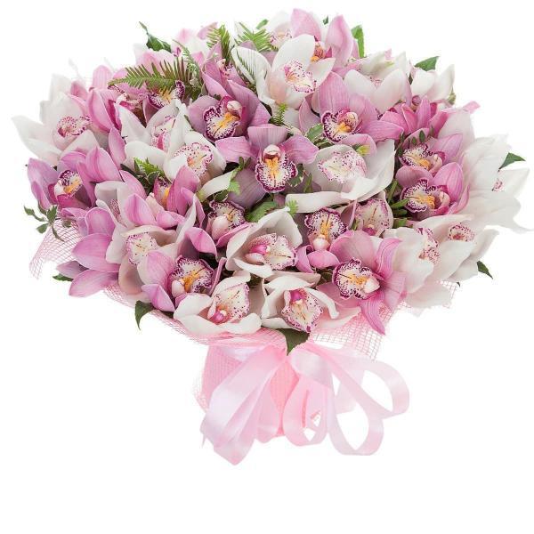 45 Орхидей