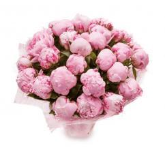 букет из 31 бутона розового пиона
