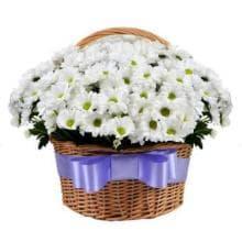 Хризантемы в корзине