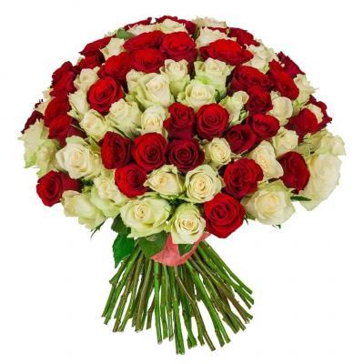"""Букет """"Вальс"""" из 101 белой и красной розы"""