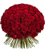 101 импортная роза  с лентой