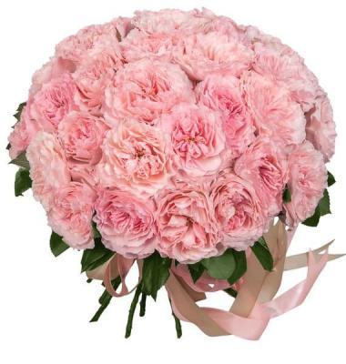 27 розовых пионовидных роз