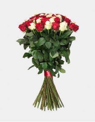 51 белая и бордовая роза