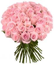 51 импортная розовая роза