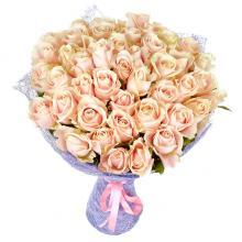 51 кремово-розовая роза