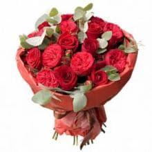9 бордовых роз РЭД ПИАНО