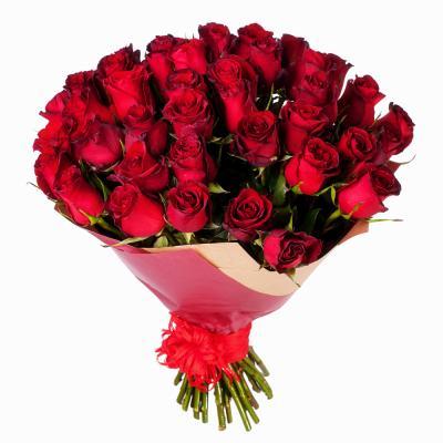 51 импортная красная роза